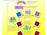 progetto parlamento elettronico